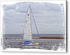 Sailing Acrylic Print by Constantine Gregory