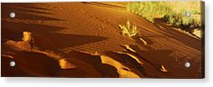 Sand Dunes In A Desert, Jordan Acrylic Print by Panoramic Images