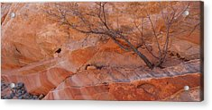 Sandstone Patterns, Valley Of Fire Acrylic Print by Panoramic Images