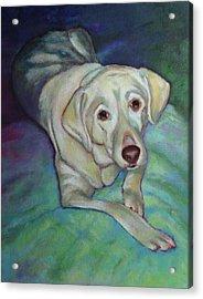Savannah The Dog Acrylic Print