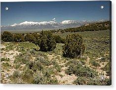 618p Schell Creek Range Nv Acrylic Print