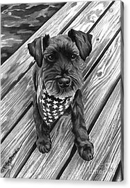 Ragnar Black Dog Acrylic Print