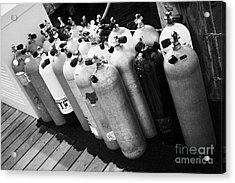 Scuba Air Tanks Lined Up On Jetty To Be Filled In Harbour Key West Florida Usa Acrylic Print by Joe Fox