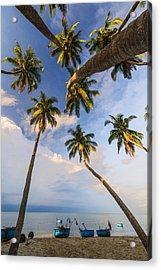 Sea And Tree Acrylic Print by Nhiem Hoang