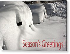 Season's Greetings Acrylic Print by Stuart Litoff