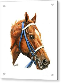 Secretariat With Racing Bridle Acrylic Print by Pat DeLong