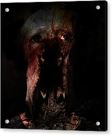 Seeing In Dreams Acrylic Print by David Fox