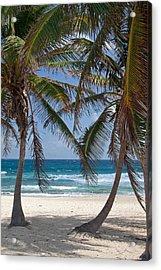 Serene Caribbean Beach  Acrylic Print