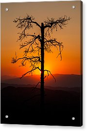 Serenity Acrylic Print by Davorin Mance