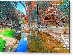 Serpentine Gorge Central Australia Acrylic Print by Bill  Robinson