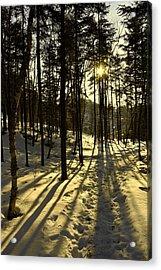 Shadows Acrylic Print by Robert Knight