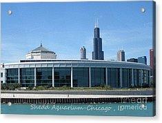 Shedd Aquarium Acrylic Print