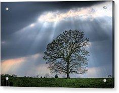 Shining Down Acrylic Print by JC Findley