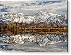 Sierra Reflections Acrylic Print by Cat Connor