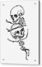 Skeletons, Illustration From Complainte De Loubli Et Des Morts Acrylic Print