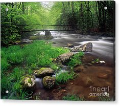 Smoky Mountain Stream 2009 Acrylic Print
