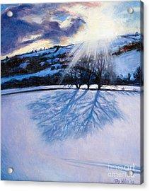 Snow Shadows Acrylic Print by Tilly Willis