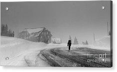 Snow Storm  Acrylic Print by Irina Hays