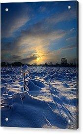 Snow Way Acrylic Print by Phil Koch