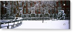 Snowcapped Benches In A Park Acrylic Print by Panoramic Images