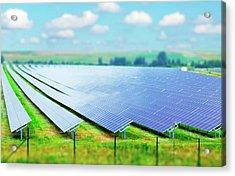 Solar Farm Acrylic Print