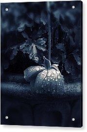 Sorrow Acrylic Print