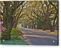 South Boundary In Spring Acrylic Print