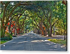 South Boundary Acrylic Print