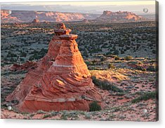 South Coyote Buttes Acrylic Print by Darryl Wilkinson