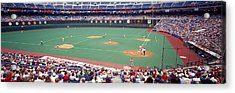 Spectator Watching A Baseball Match Acrylic Print by Panoramic Images