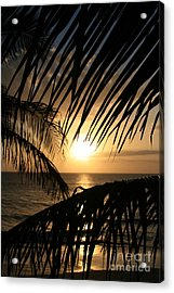 Acrylic Print featuring the photograph Spirit Of The Dance by Sharon Mau