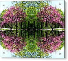 Acrylic Print featuring the digital art Spring by Dale   Ford