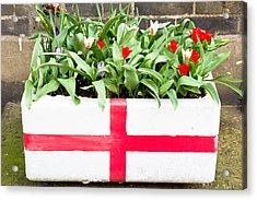 Spring Flowers Acrylic Print by Tom Gowanlock