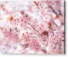 Spring Acrylic Print by Roselynne Broussard
