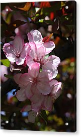 Acrylic Print featuring the photograph Spring by Vadim Levin