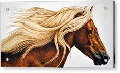 Spun Gold Acrylic Print by Pat Erickson