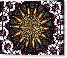 Stained Glass Kaleidoscope 1 Acrylic Print by Rose Santuci-Sofranko