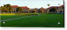 Stanford University Campus, Palo Alto Acrylic Print by Panoramic Images