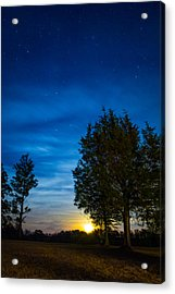 Starry Night Acrylic Print by Shelby  Young