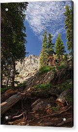 Steep Mountain Hike Acrylic Print by Michael J Bauer