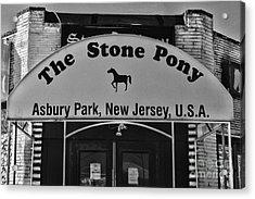Stone Pony Acrylic Print by Paul Ward