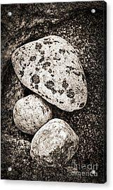 Stones Acrylic Print by Elena Elisseeva