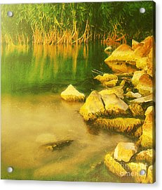 Stones In Front Of The Reed Acrylic Print by Odon Czintos