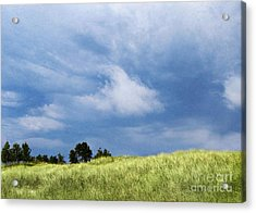 Storm Over Grassy Dune Acrylic Print
