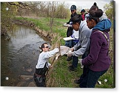 Students Studying River Ecology Acrylic Print