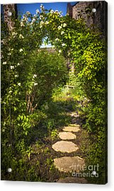 Summer Garden And Path Acrylic Print by Elena Elisseeva
