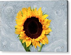 Acrylic Print featuring the photograph Sunflower by Bill Howard