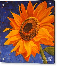 Acrylic Print featuring the painting Sunflower Gazing by Janet McDonald