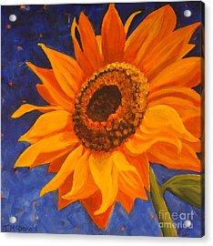 Sunflower Gazing Acrylic Print