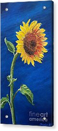 Sunflower In The Light Acrylic Print